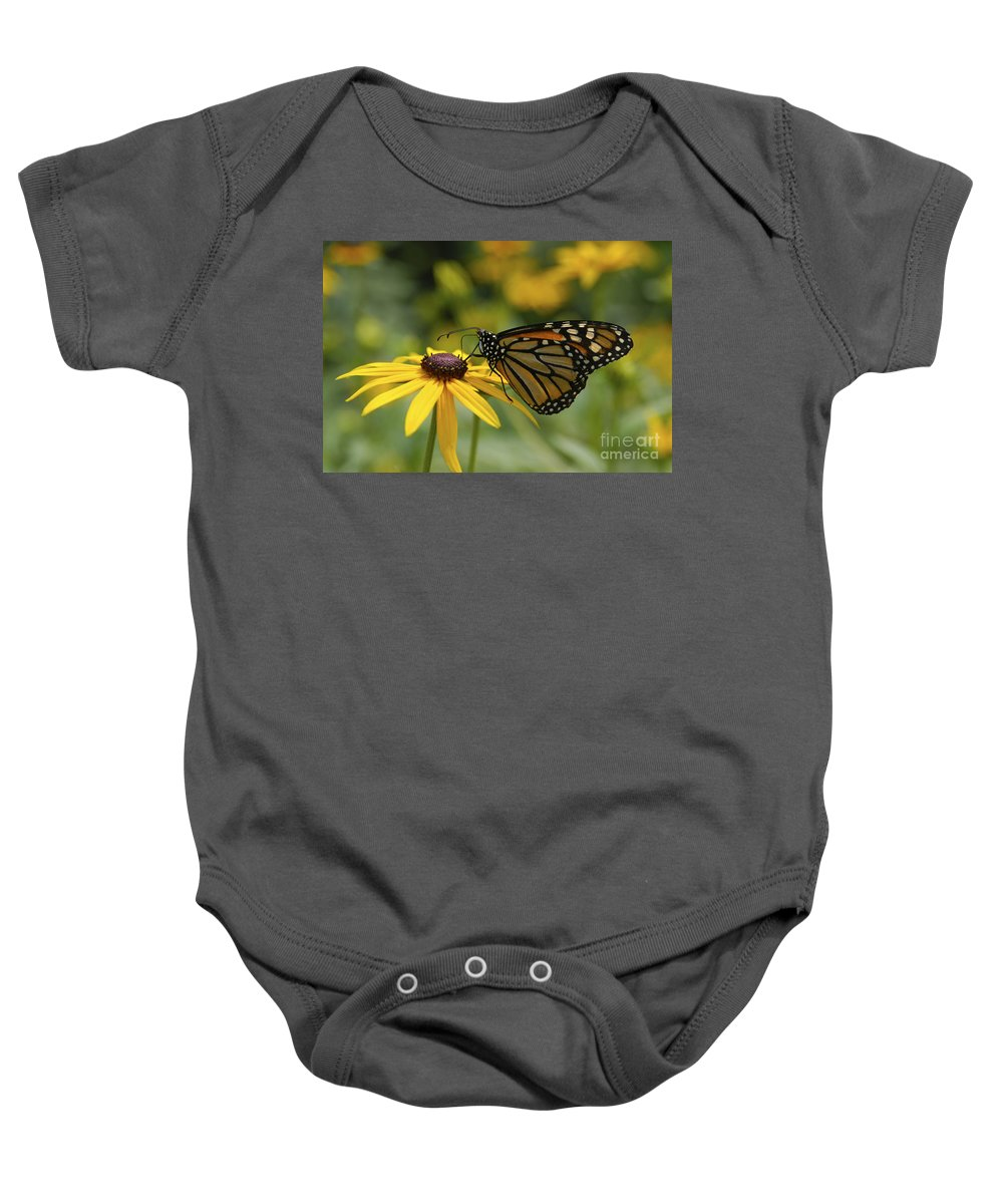 Monarch Butterfly Baby Onesie featuring the photograph Monarch Butterfly by Anthony Sacco