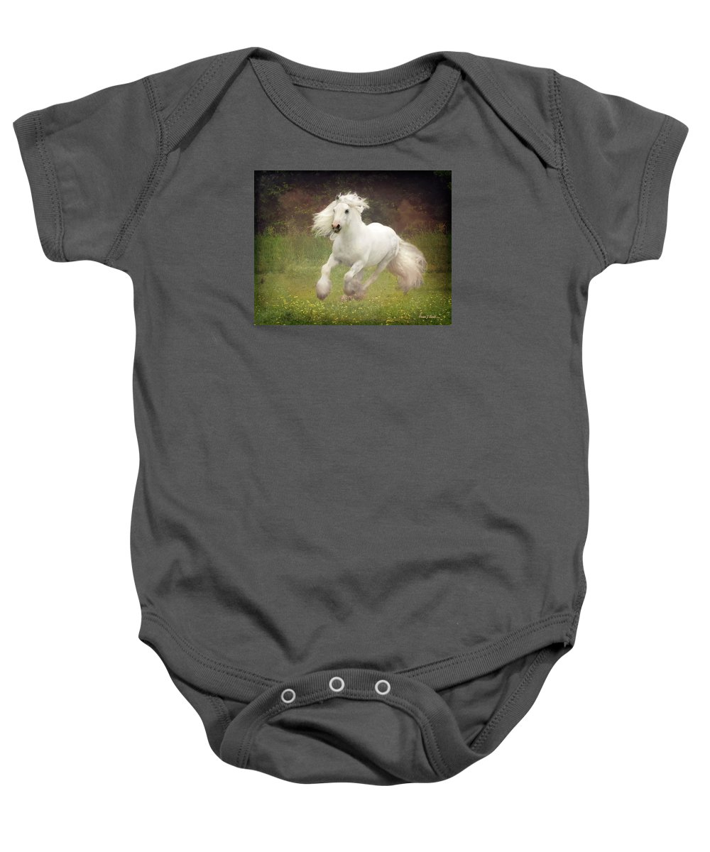 Horses Baby Onesie featuring the photograph Morning Mist C by Fran J Scott