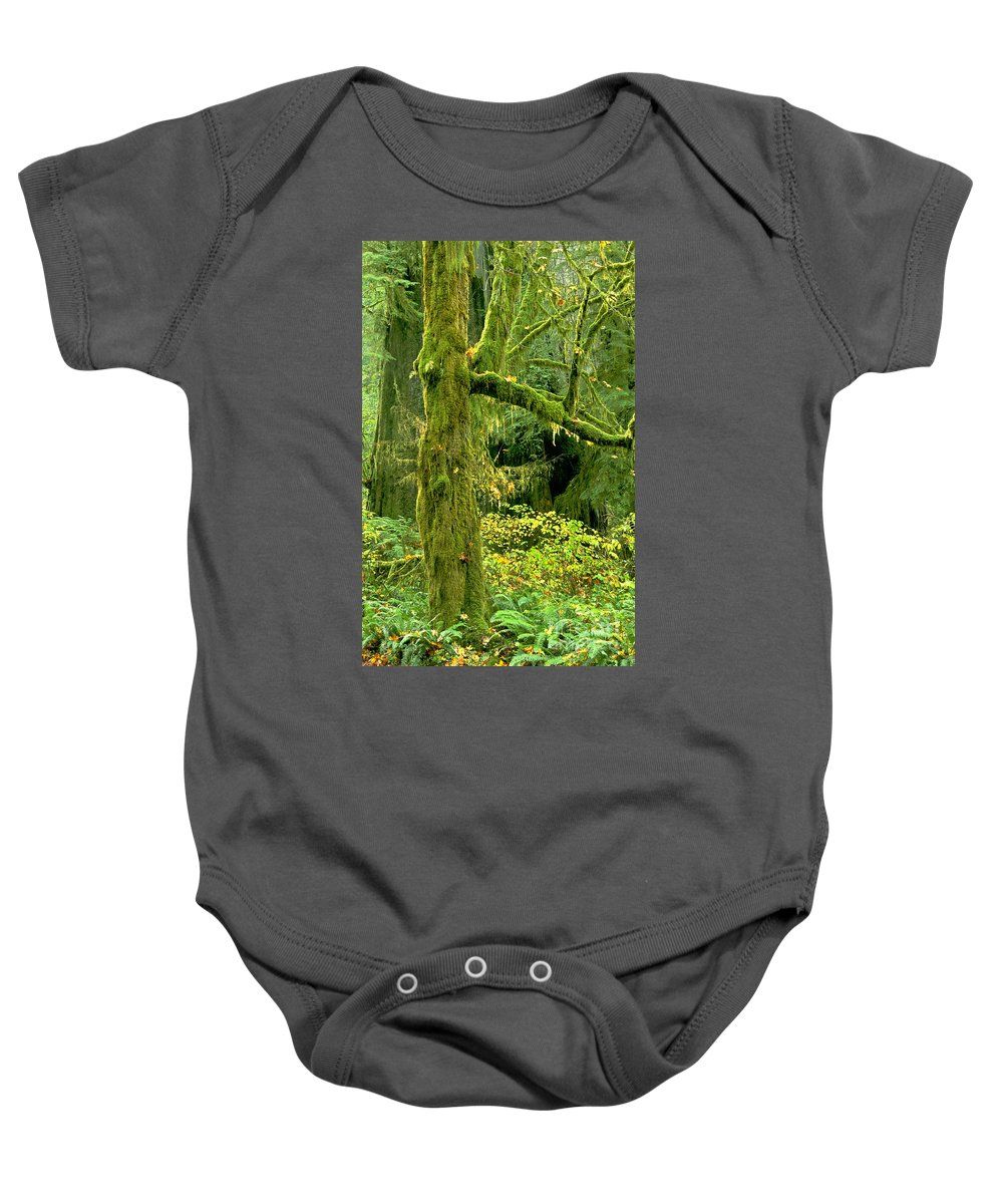 Big Leaf Maple Baby Onesie featuring the photograph Moss Draped Big Leaf Maple California by Dave Welling