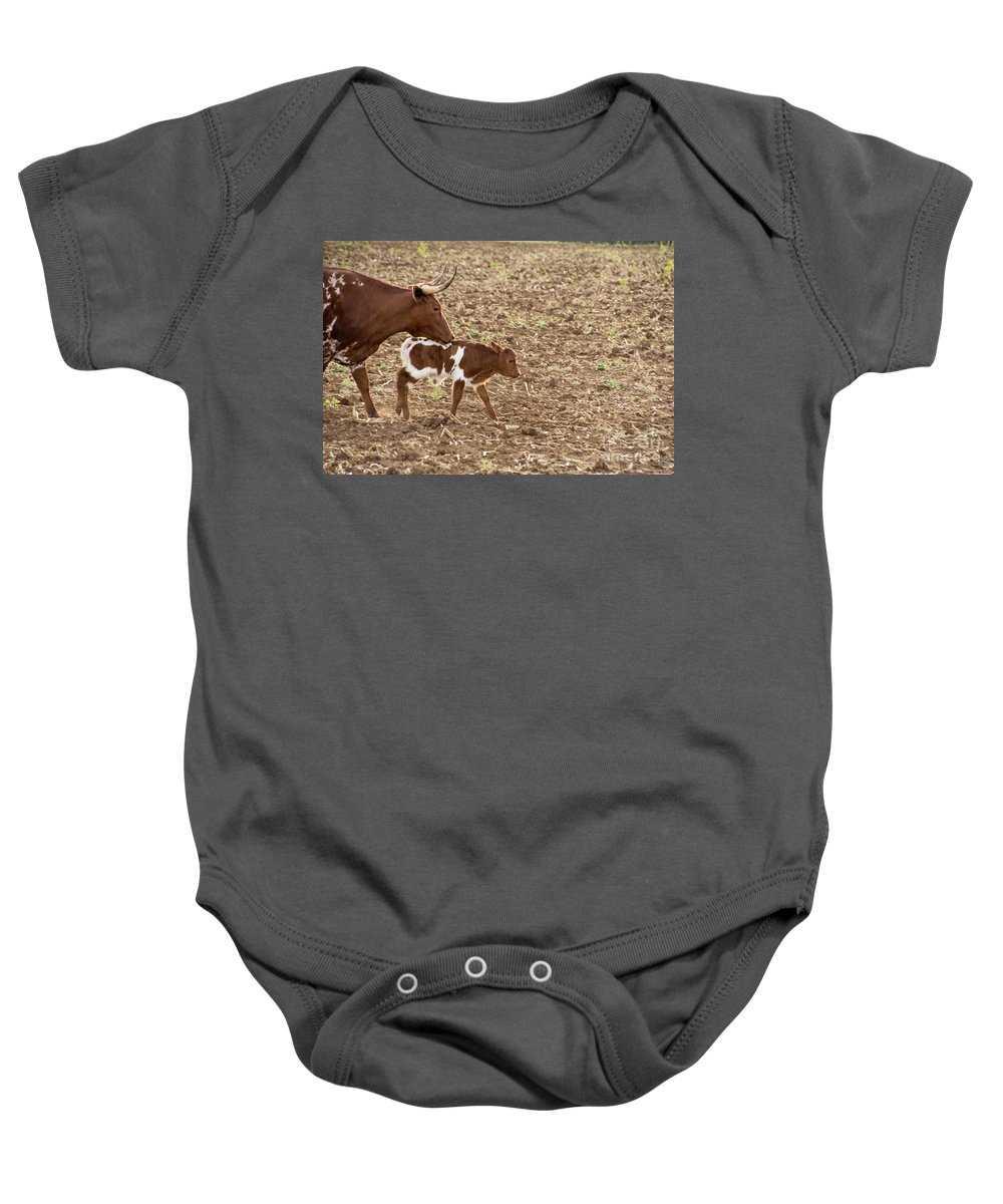 Long Horn Cattle Baby Onesie featuring the photograph Mother And Child V5 by Douglas Barnard