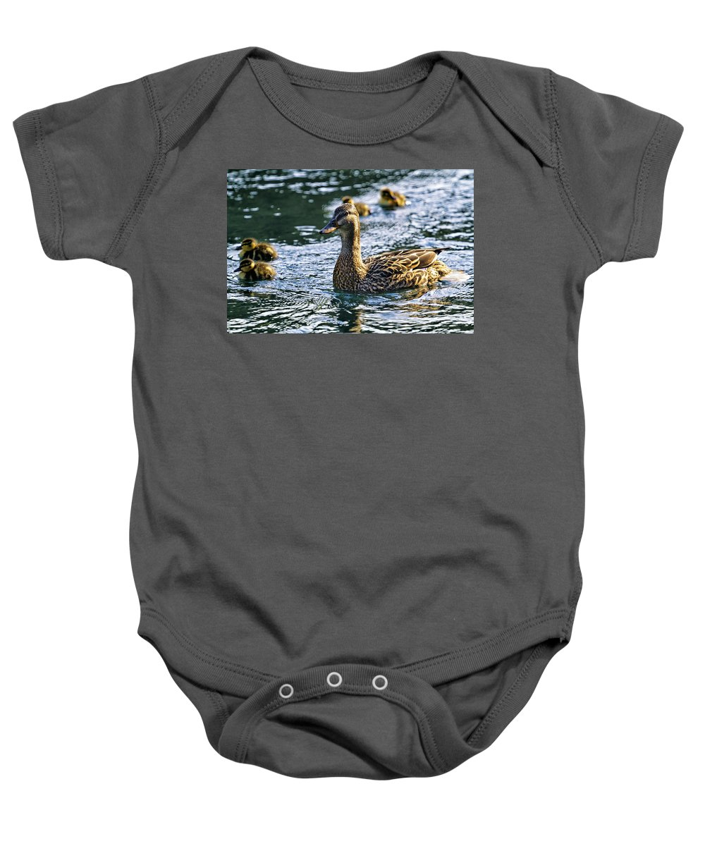Duckling Baby Onesie featuring the photograph Mother Duck by Belinda Greb