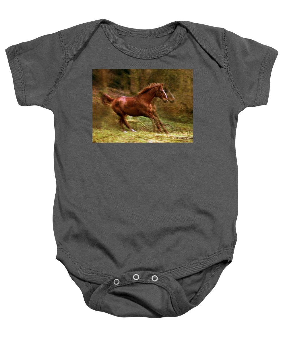 Horse Baby Onesie featuring the photograph Motion Picture by Angel Ciesniarska