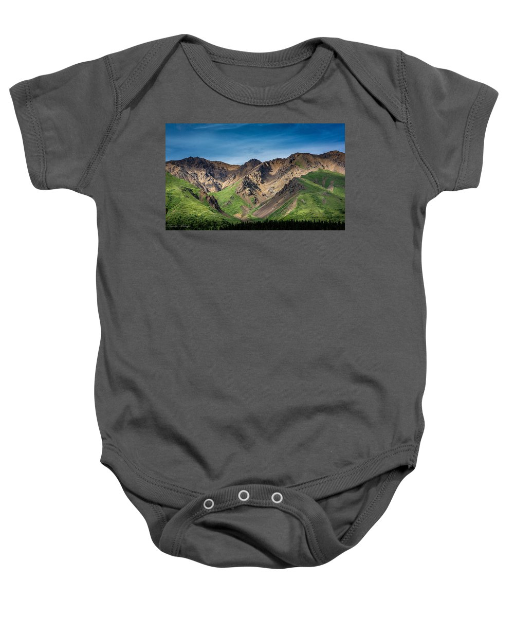Grass Baby Onesie featuring the photograph Mountainside Foliage by Andrew Matwijec