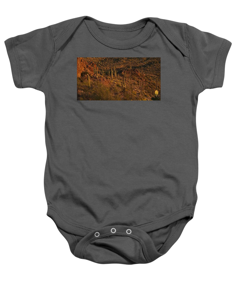 Cacti Baby Onesie featuring the photograph Mountainside Of Cacti by Geoffrey Bolte