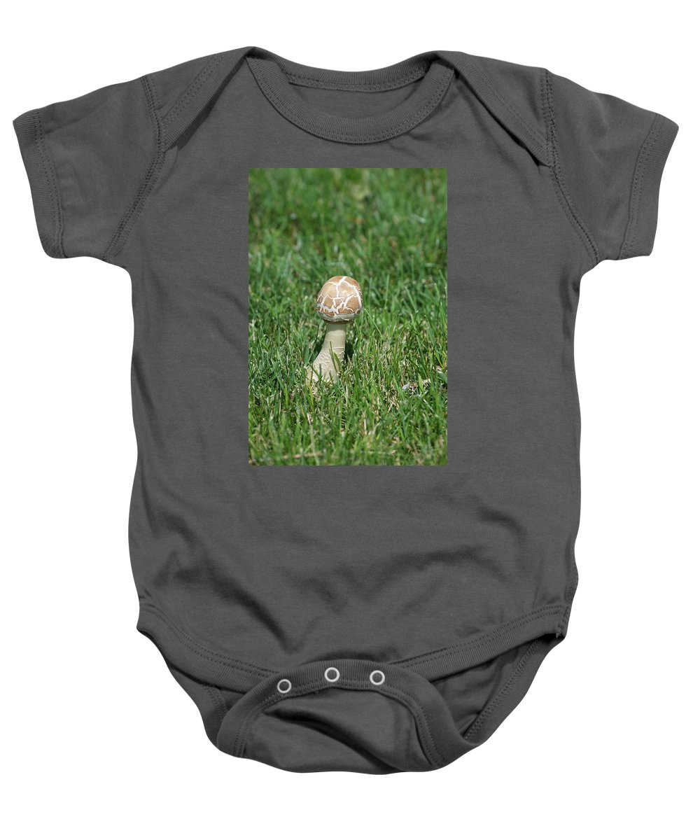 Mushroom Baby Onesie featuring the photograph Mushroom 01 by Thomas Woolworth