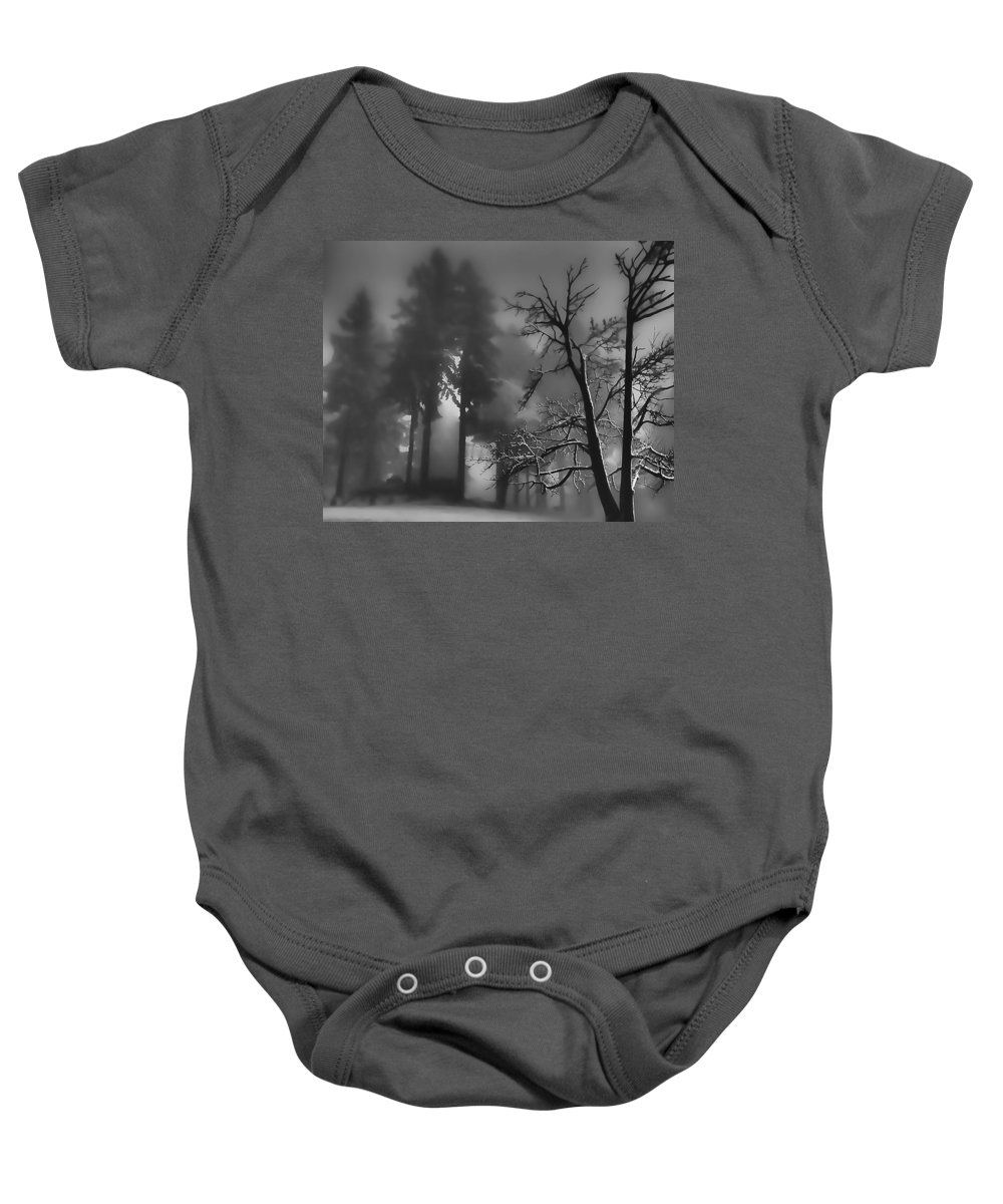 Evergreens Baby Onesie featuring the photograph Mystic Fog by Don Schwartz