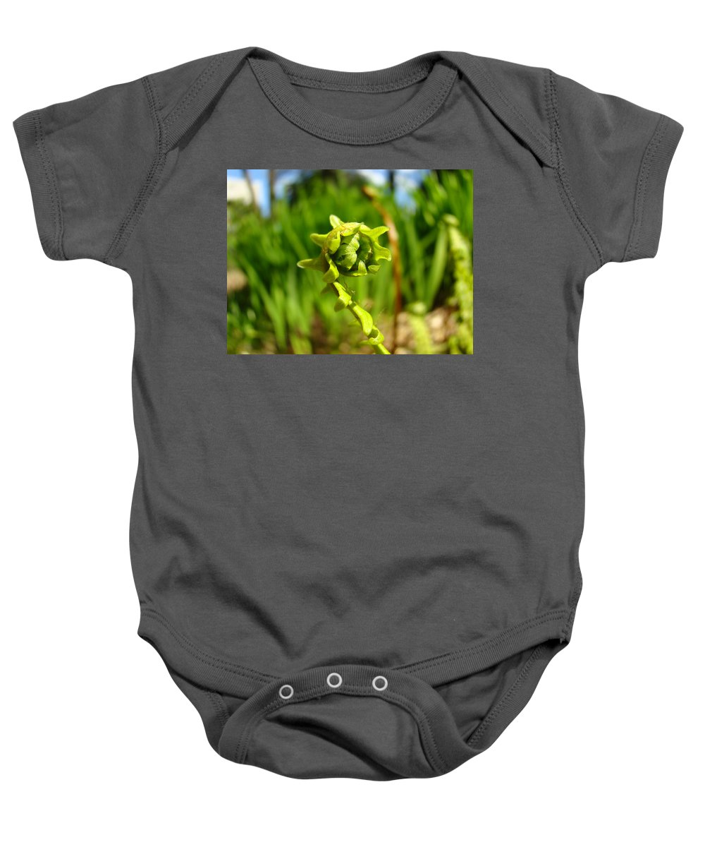 Fern Baby Onesie featuring the photograph Nature Green Fern Frond Unfolding Art Prints Ferns by Baslee Troutman