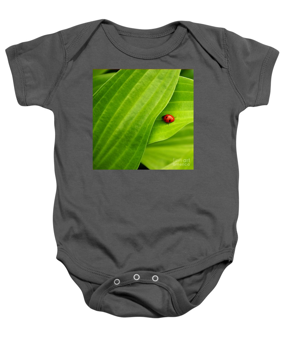 Ladybug Baby Onesie featuring the photograph Naturellement Complementaire by Aimelle