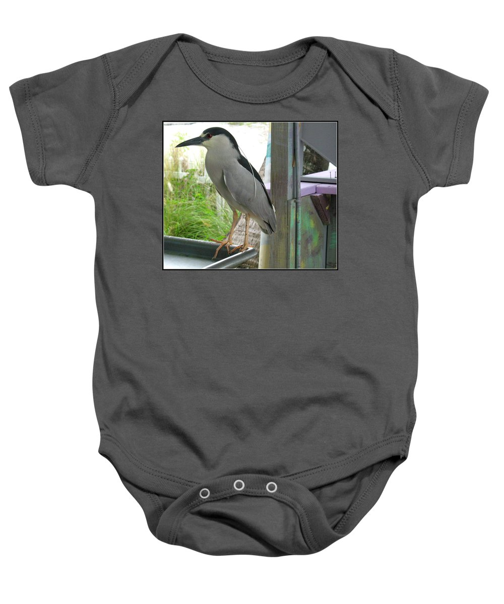 Bird Baby Onesie featuring the photograph Night Heron by Kathy Barney