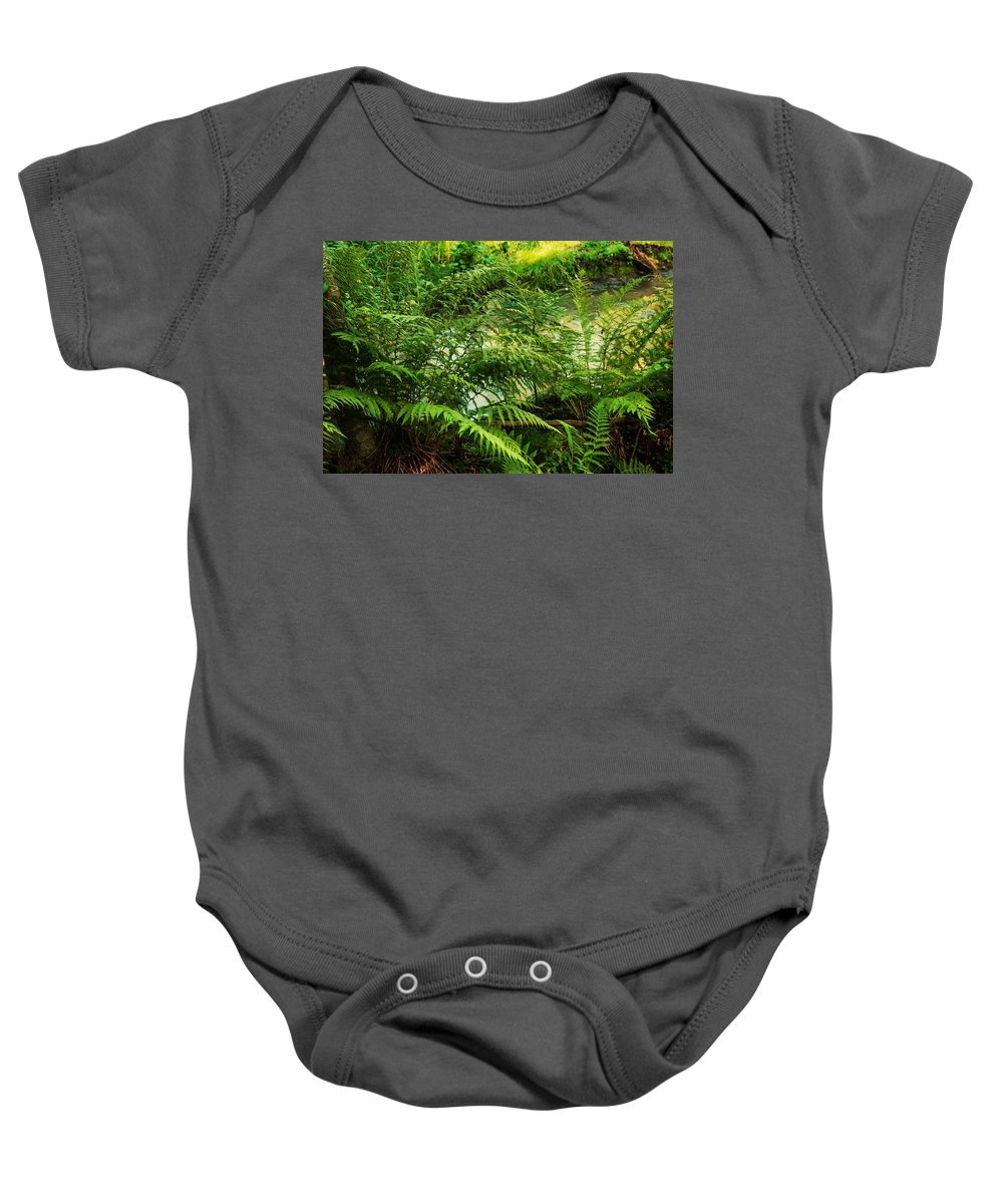 Island Baby Onesie featuring the photograph Northern Forest 3 by Jenny Rainbow