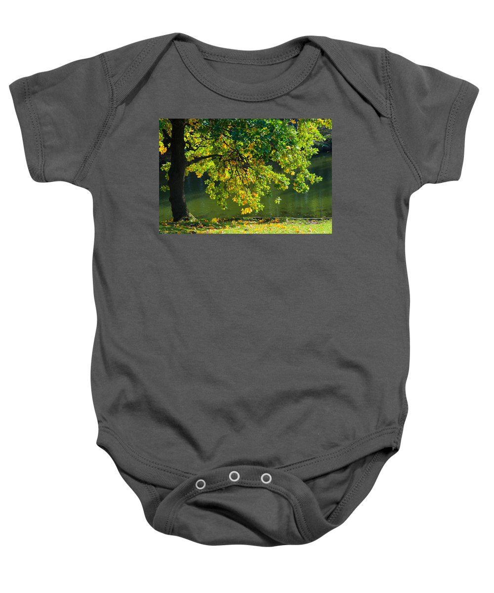 Autumn Baby Onesie featuring the photograph Oak Tree By The Pond - Featured 3 by Alexander Senin