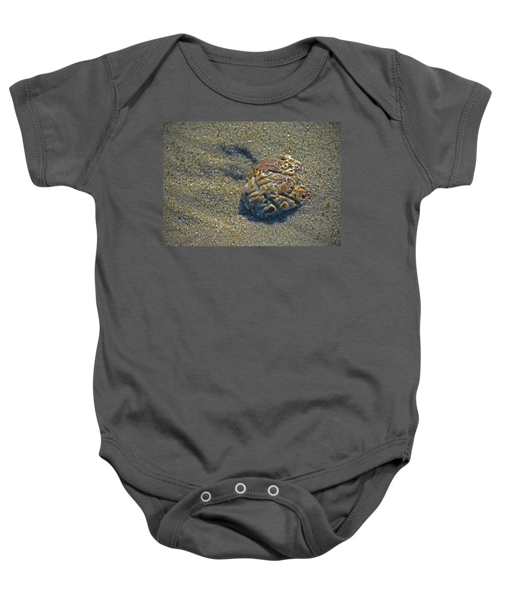 Sculpted Shell Baby Onesie featuring the photograph Ocean Sculpture by Sandi OReilly