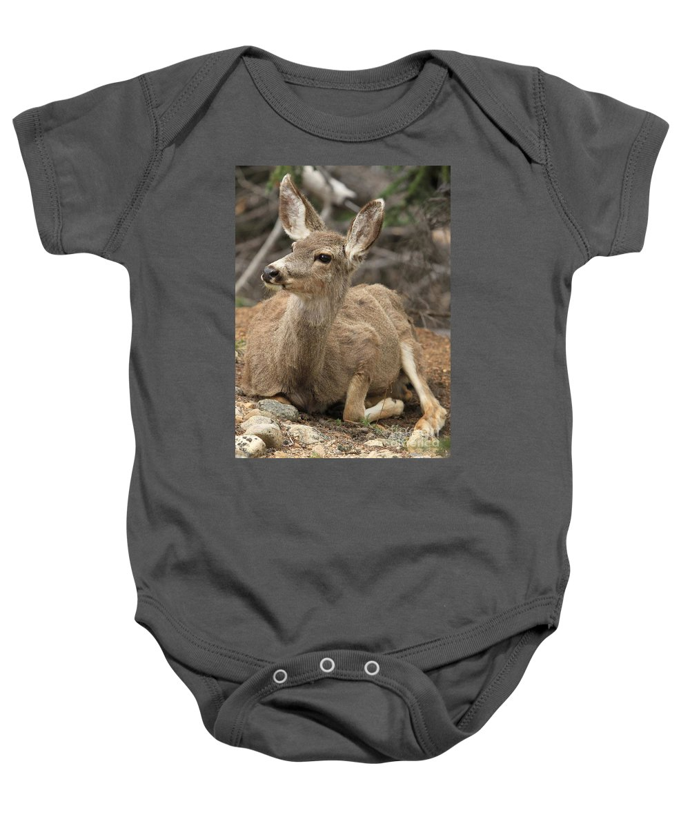Rocky Mountain National Park Baby Onesie featuring the photograph Oh Deer by Adam Jewell
