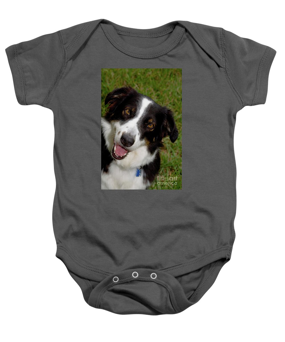 Dog Baby Onesie featuring the photograph Old Faithful by Diane Macdonald