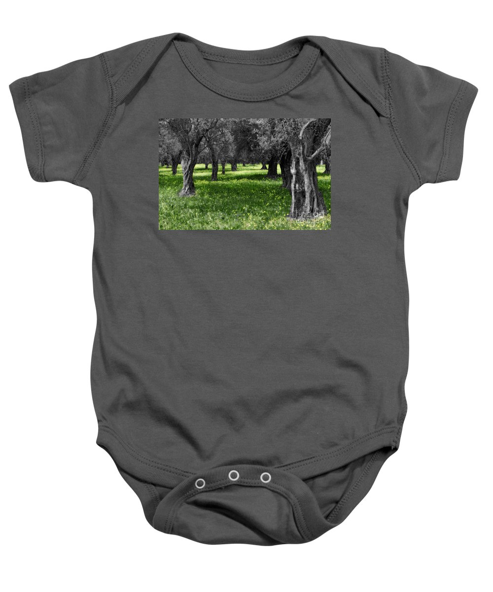 Olive Grove Baby Onesie featuring the photograph Olive Grove Italy Cbw by Mike Nellums
