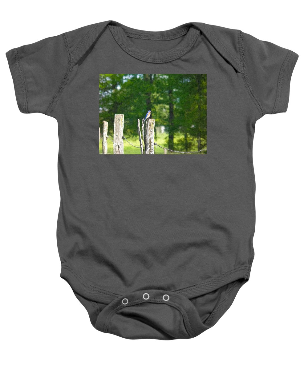 Bluebird Baby Onesie featuring the photograph On The Hunt 2 by Nick Kirby