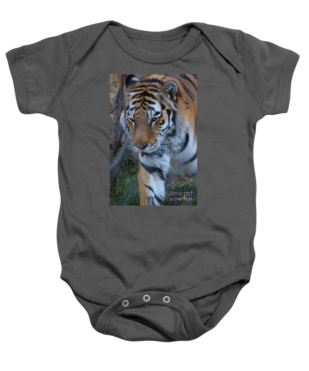 Zoo Baby Onesie featuring the photograph On The Prowl by Tonya Hance