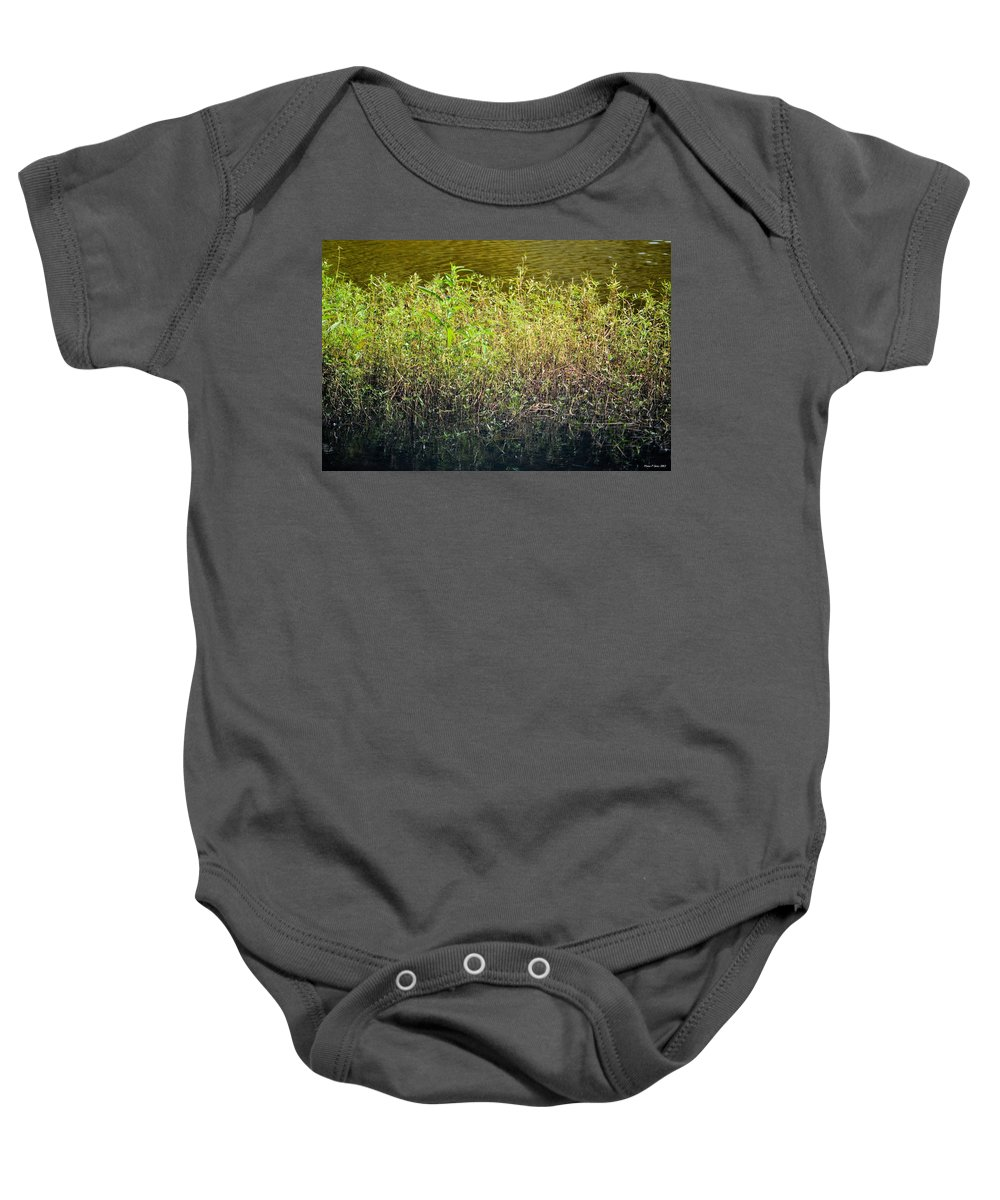 Once Upon An Egret's Home Baby Onesie featuring the photograph Once Upon An Egret's Home by Maria Urso