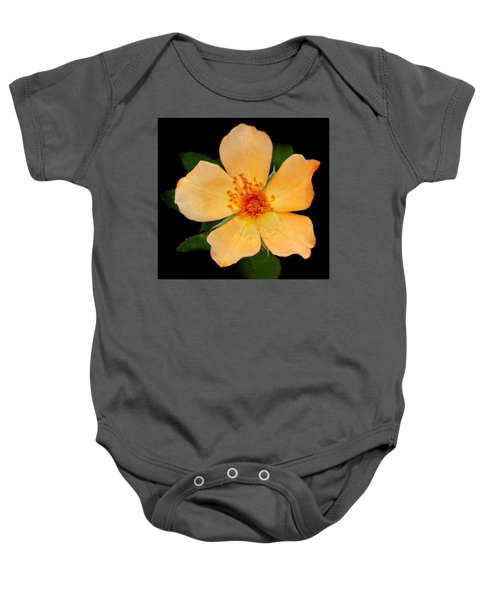 Orange Baby Onesie featuring the photograph Orange Blossom by Dave Mills