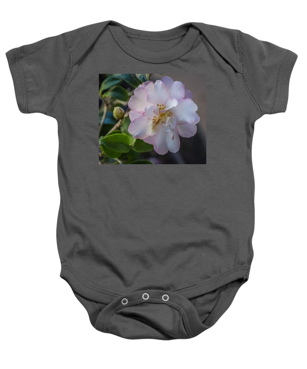 Flower Baby Onesie featuring the photograph Orchid Camellia by Jane Luxton