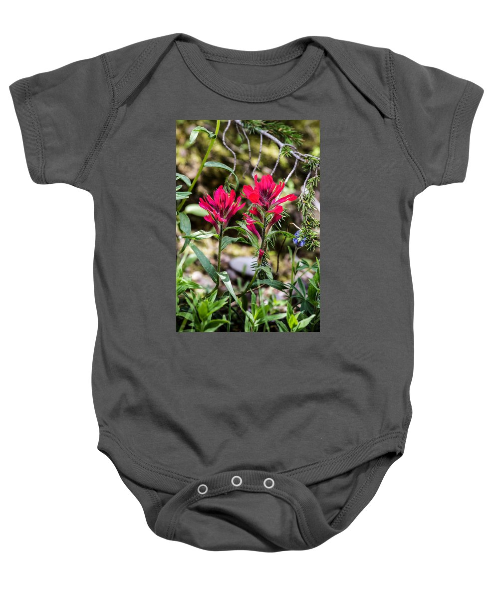 Paintbrush Baby Onesie featuring the photograph Paintbrush by Michael Chatt