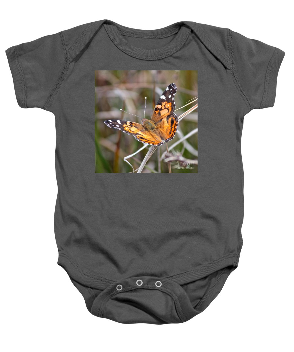 Butterfly Baby Onesie featuring the photograph Painted Lady Square by Carol Groenen