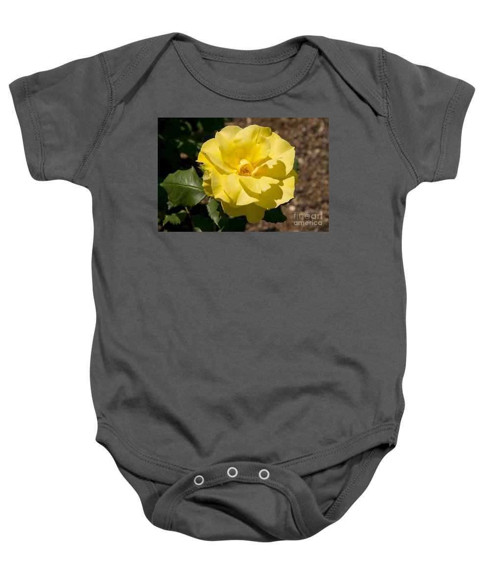 Parnell Rose Garden Dove-myer Robinson Park Auckland New Zealand Yellow Roses Gardens Parks Flower Flowers Bloom Blooms Baby Onesie featuring the photograph Parnell Yellow Rose by Bob Phillips