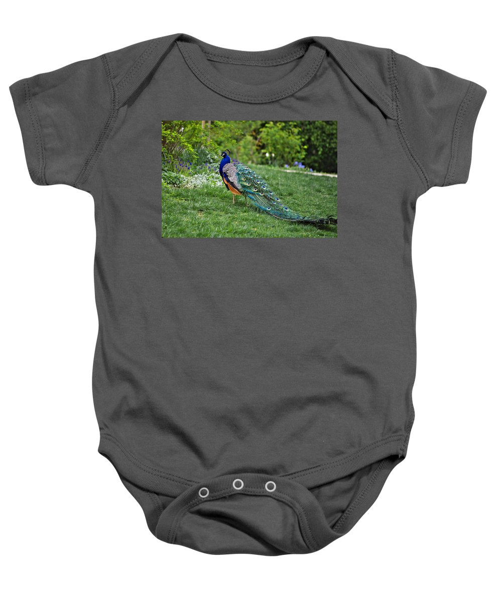 Animal Baby Onesie featuring the photograph Peacock by Ivan Slosar