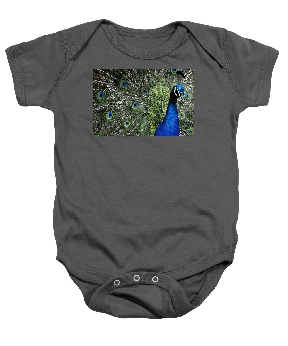 Peacock Baby Onesie featuring the photograph Peacock by Ron White