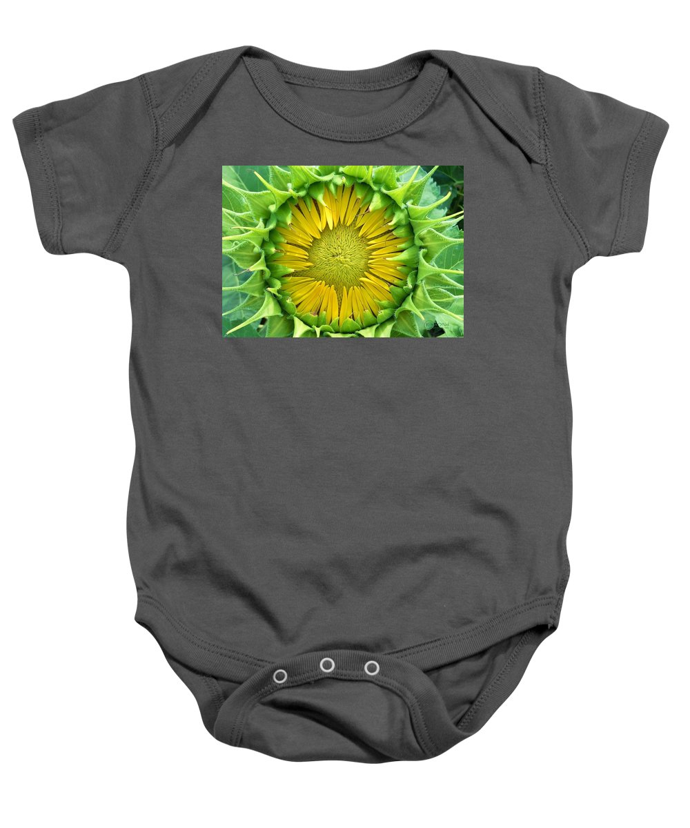 Sunflower Baby Onesie featuring the photograph Peaking Out #1 by Robert ONeil