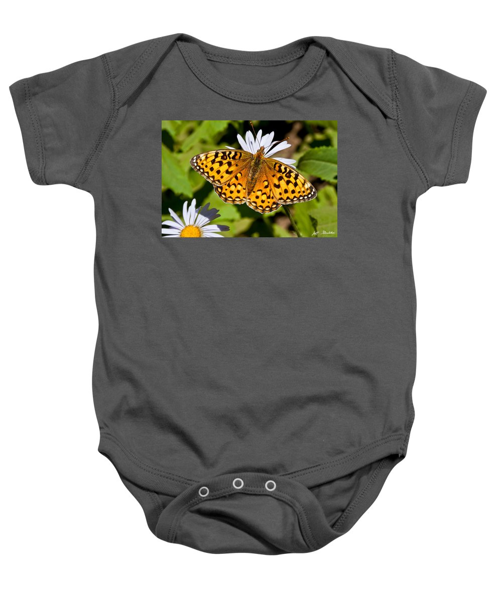Aster Baby Onesie featuring the photograph Pearl Border Fritillary Butterfly On An Aster Bloom by Jeff Goulden