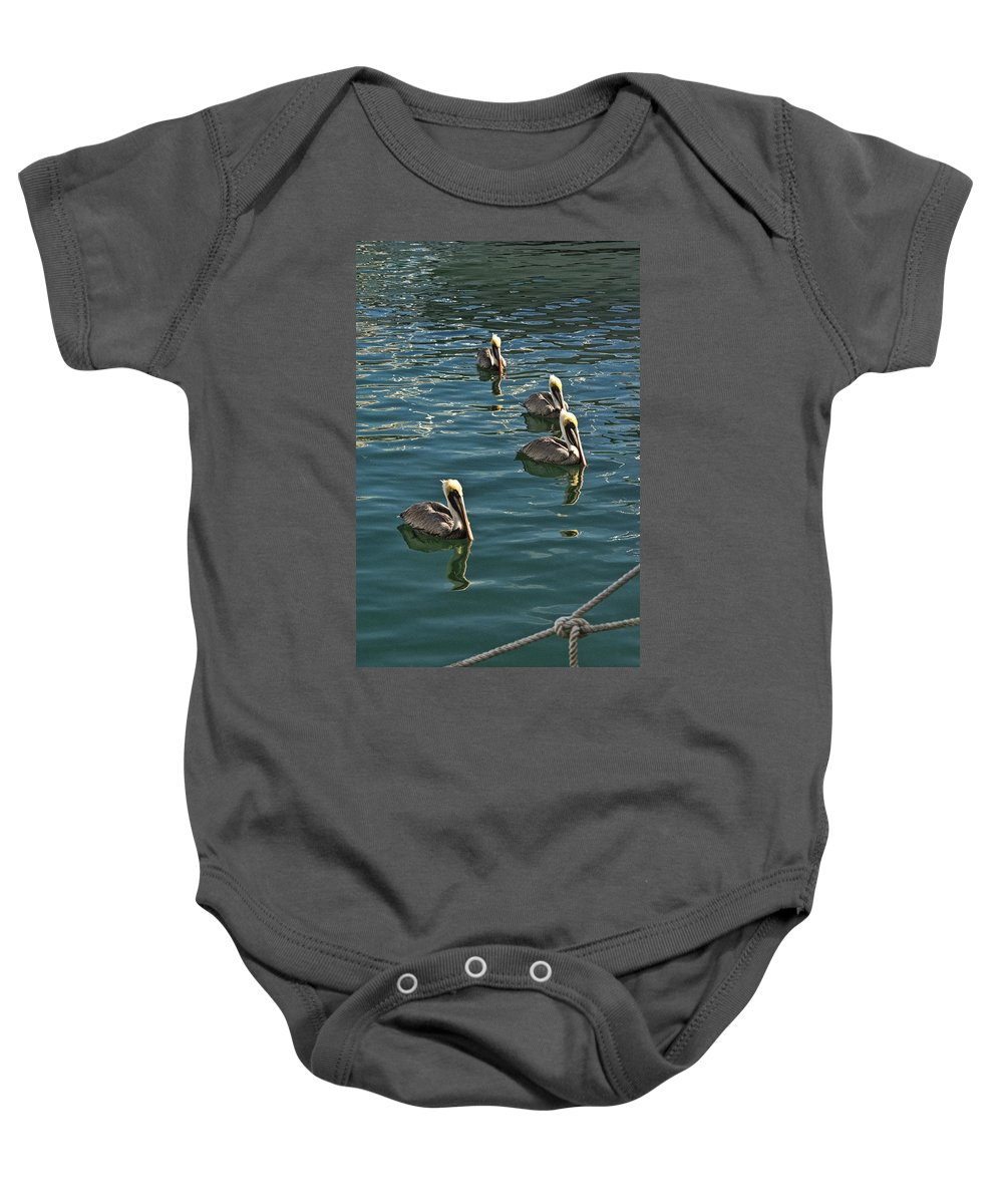 Art Baby Onesie featuring the photograph Pelicans On The Water In Key West by Randall Nyhof