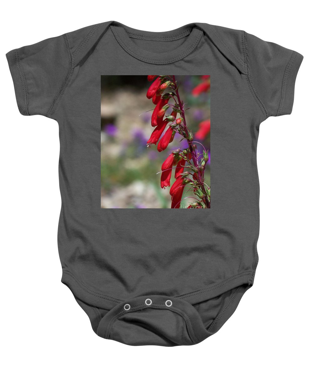 Flowers Baby Onesie featuring the photograph Penstemon by Kathy McClure