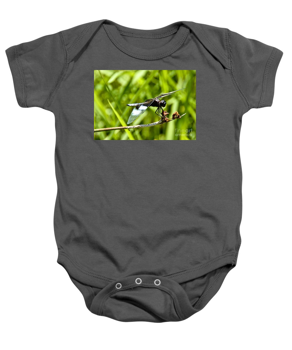 Dragonfly Baby Onesie featuring the photograph Perched Widow Skimmer by Cheryl Baxter