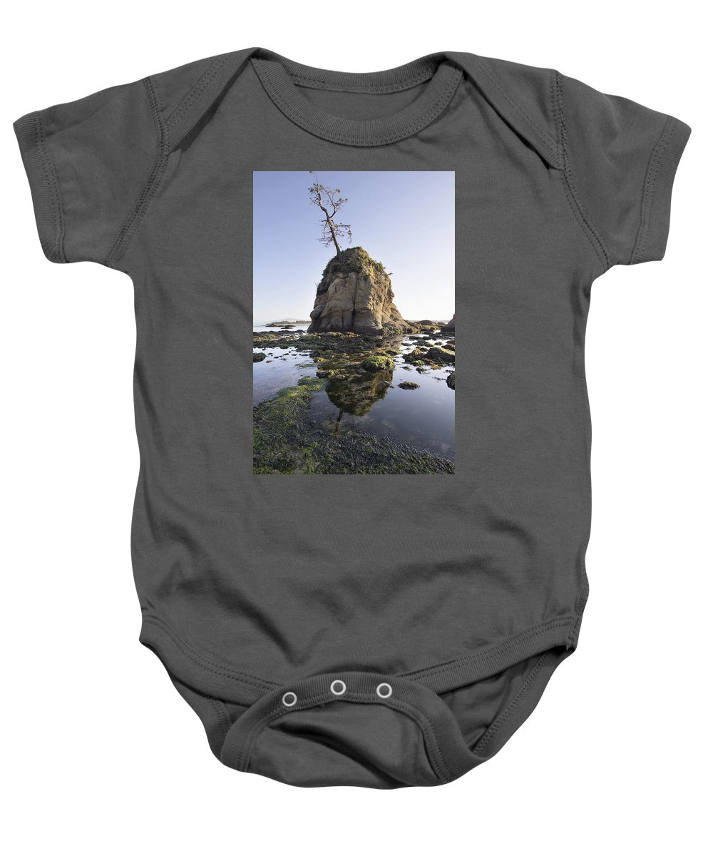 Pig Baby Onesie featuring the photograph Pig And Sows Rock In Garibaldi Oregon At Low Tide by Jit Lim