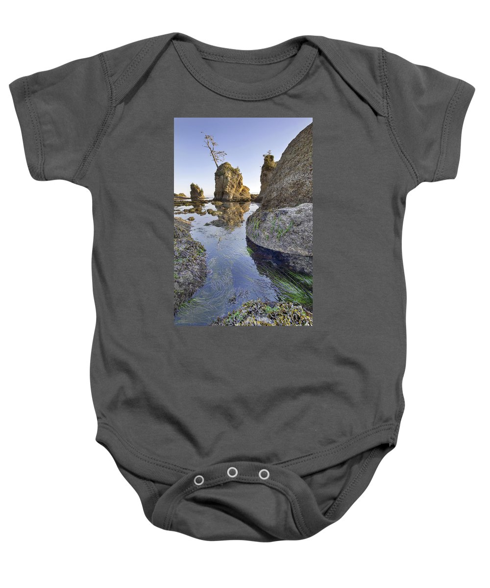 Pig Baby Onesie featuring the photograph Pig And Sows Rock In Garibaldi Oregon At Low Tide Vertical by Jit Lim