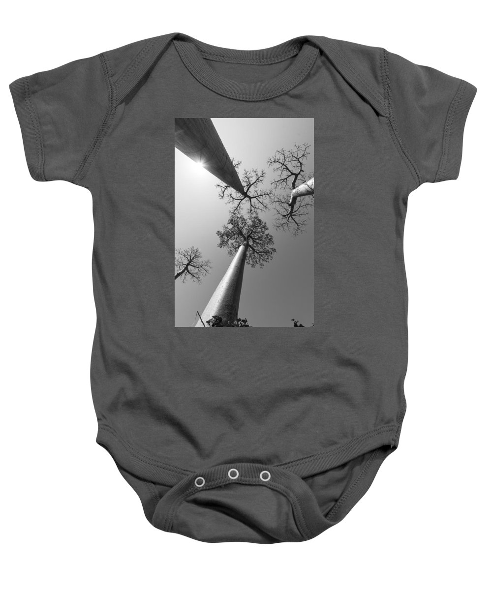 Trees Baby Onesie featuring the photograph Pillars Of The Community by Alex Lapidus