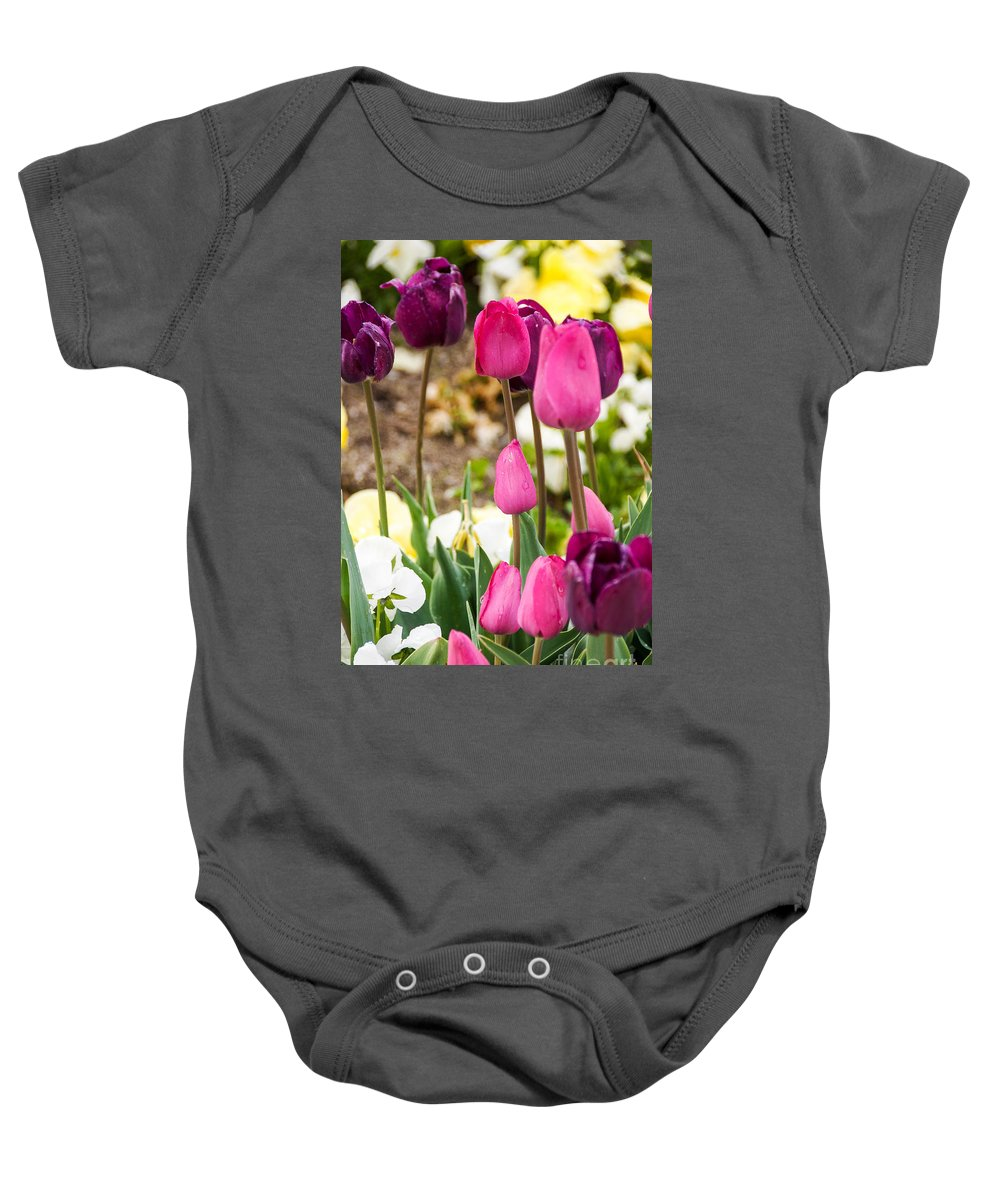 Tulip Baby Onesie featuring the photograph Pink And Purple by Gloria Pasko