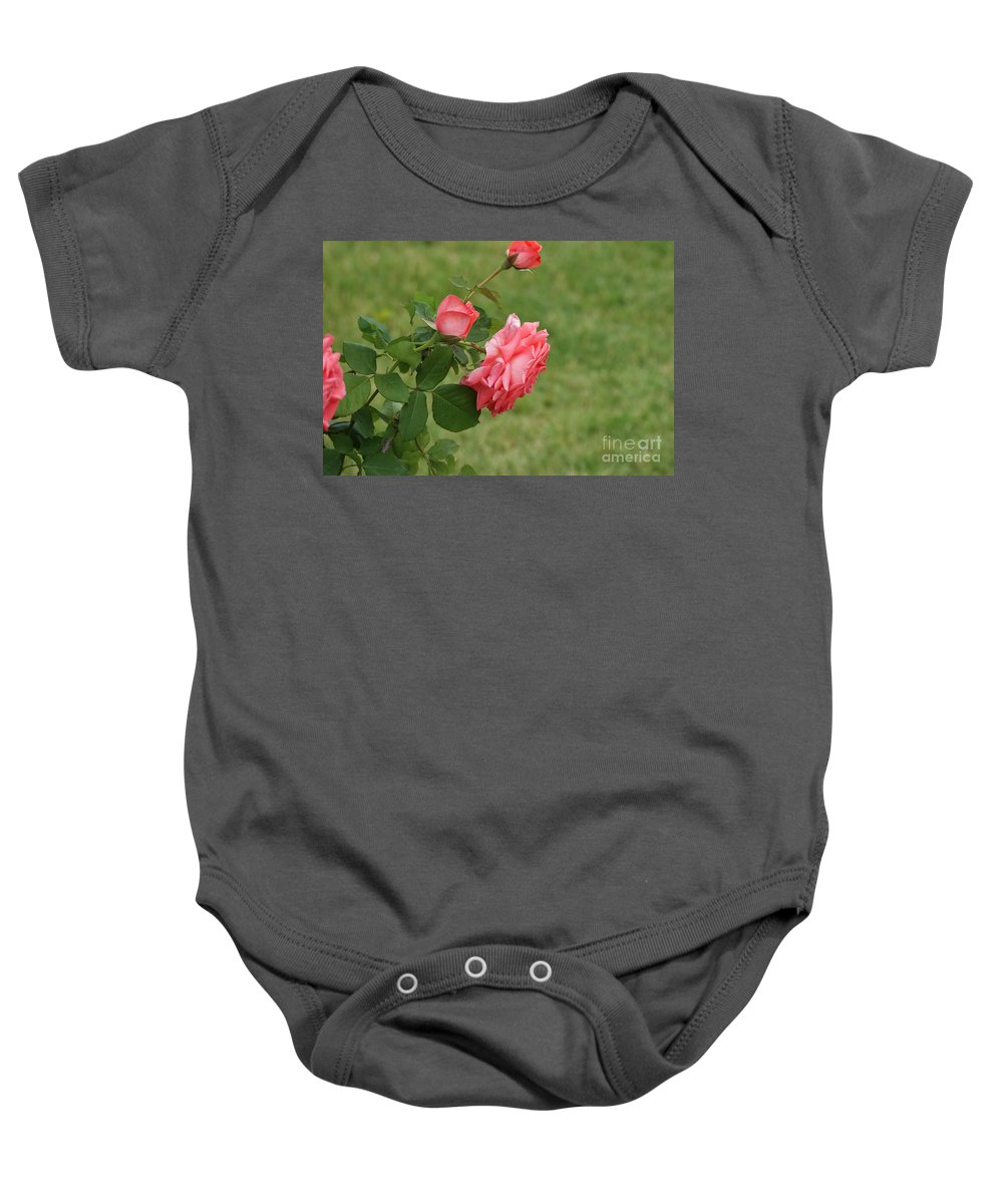 Pink Baby Onesie featuring the photograph Pink And White Blended Stem by Rob Luzier