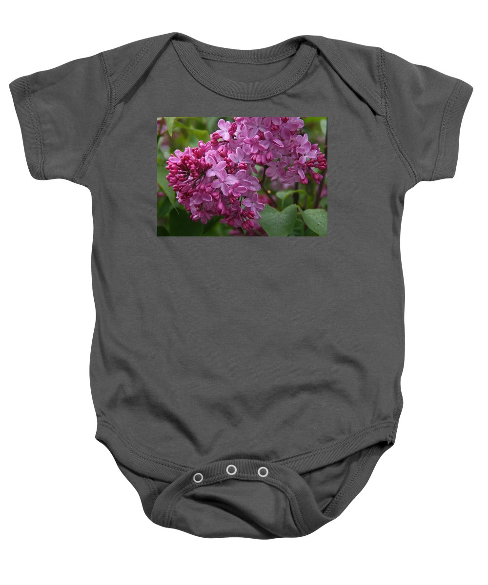 Lilacs Baby Onesie featuring the photograph Pink Lilacs by Elizabeth Rose