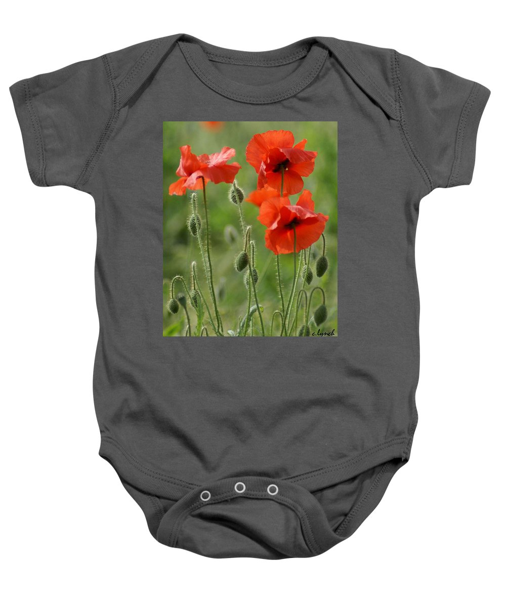 Poppies Baby Onesie featuring the photograph Poppies 2 by Carol Lynch