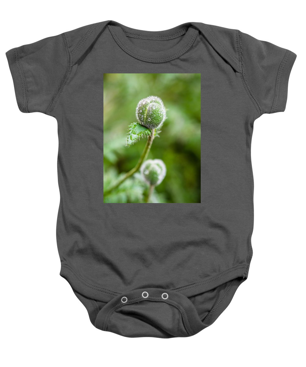 Angiospermae Baby Onesie featuring the photograph Poppy Buds by Mark Llewellyn
