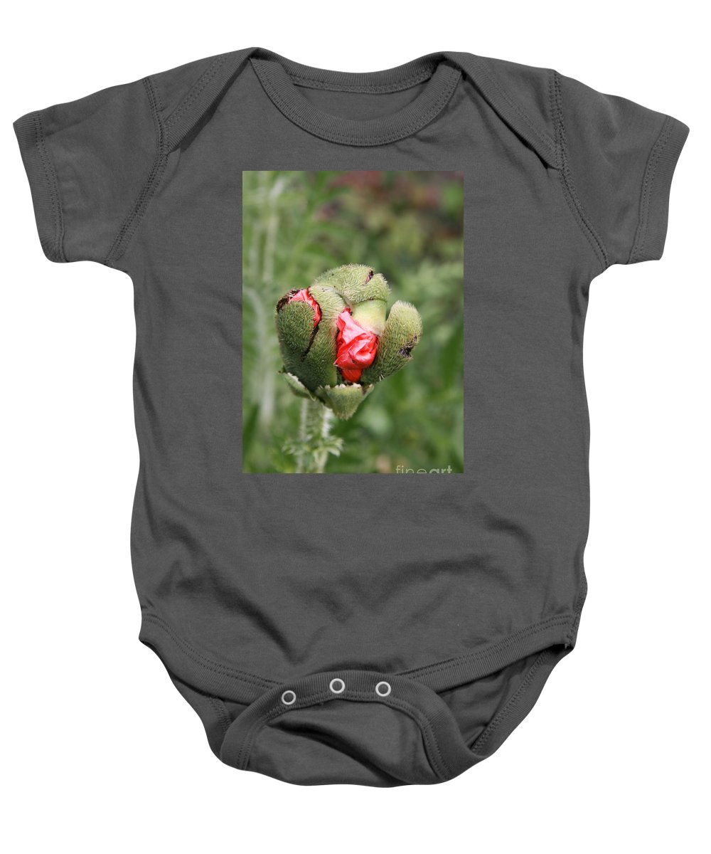 Flowers Baby Onesie featuring the photograph Poppybud by Christiane Schulze Art And Photography