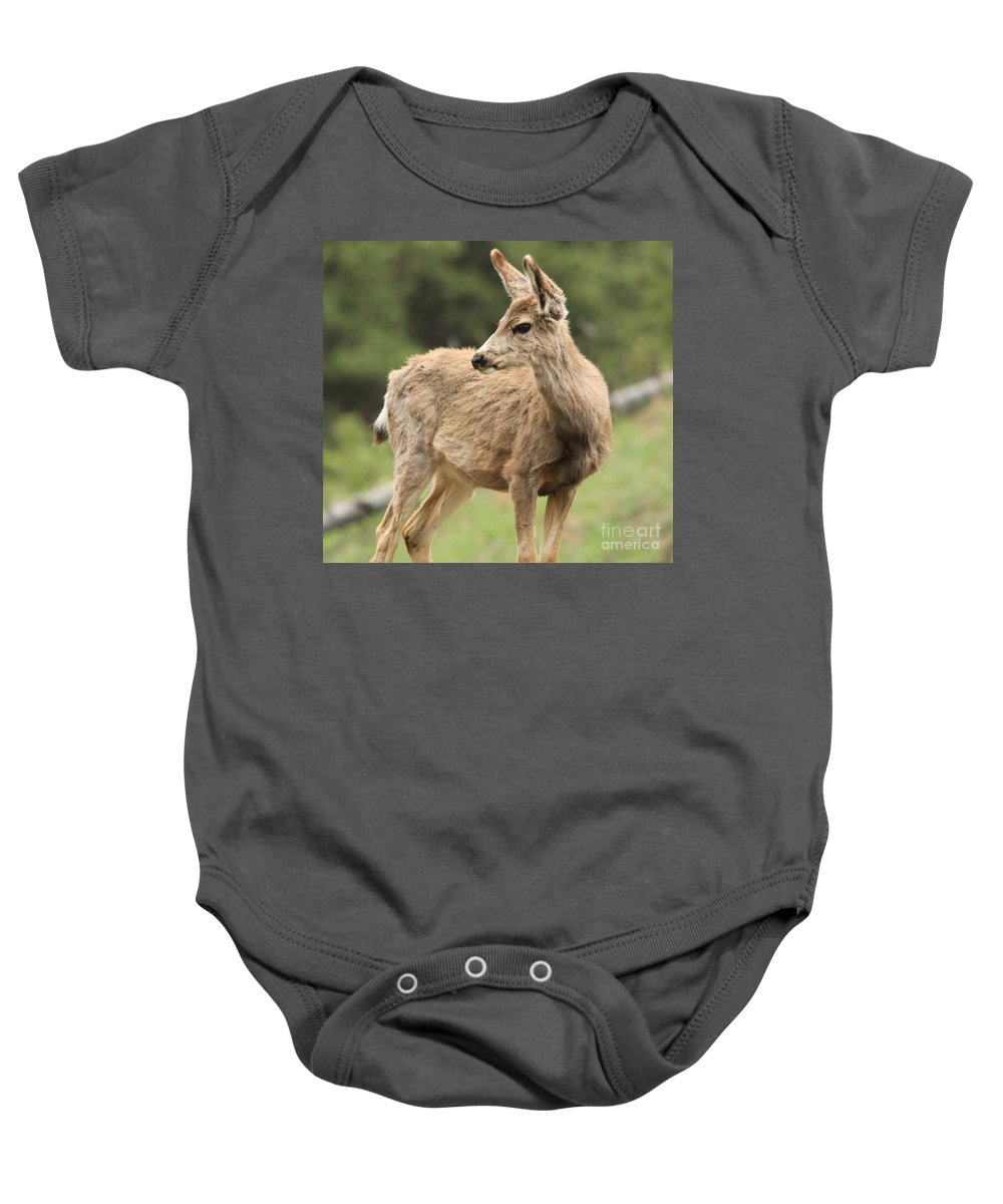 Rocky Mountain National Park Baby Onesie featuring the photograph Pose In The Rockies by Adam Jewell