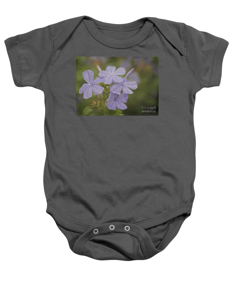 Fall Baby Onesie featuring the photograph Pretty Lavendar Plumbago Flowers by Sabrina L Ryan