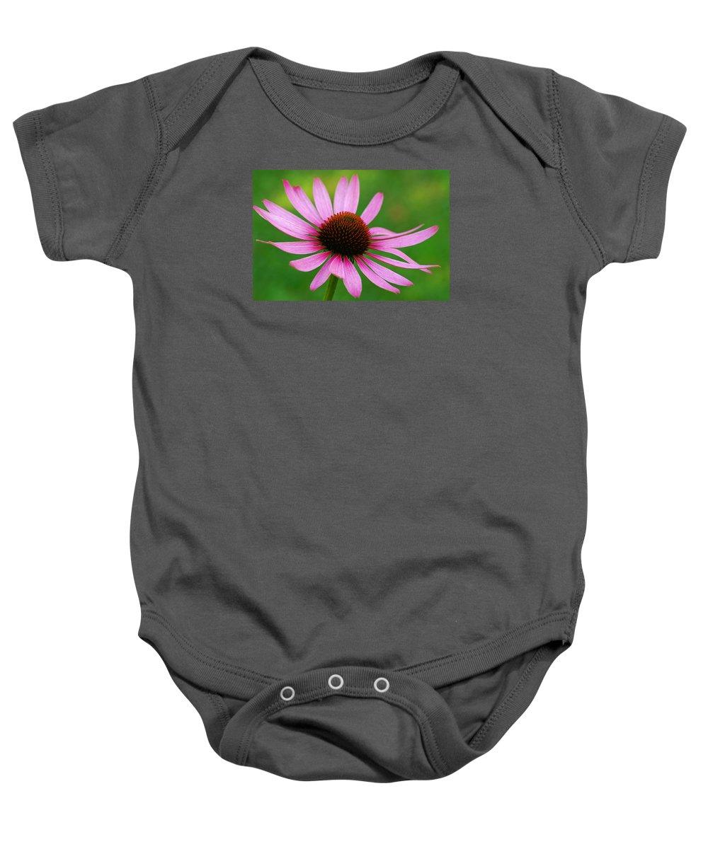 Wildflower Baby Onesie featuring the photograph Purple Cone Flower by Bill Morgenstern