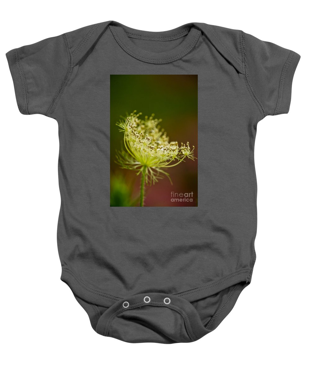 Michael Cummings Baby Onesie featuring the photograph Queen Anne's Lace by Michael Cummings
