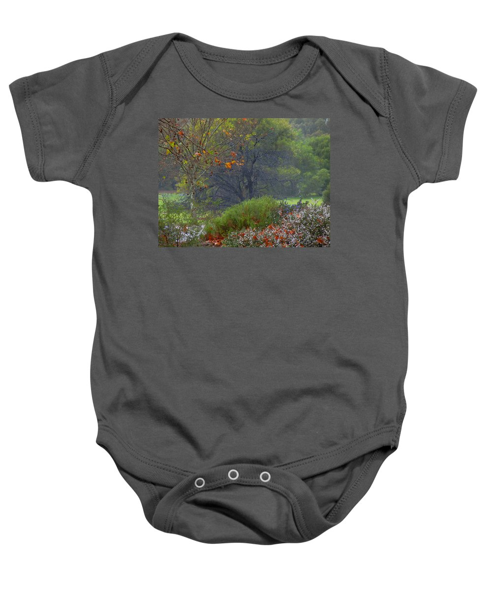 Landscape Baby Onesie featuring the photograph Rainy Afternoon by Mark Blauhoefer