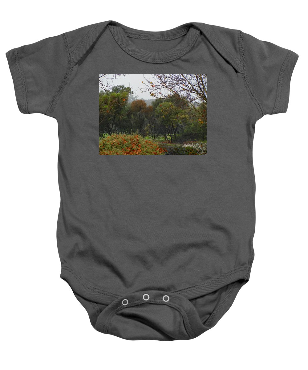 Landscape Baby Onesie featuring the photograph Rainy Forest by Mark Blauhoefer