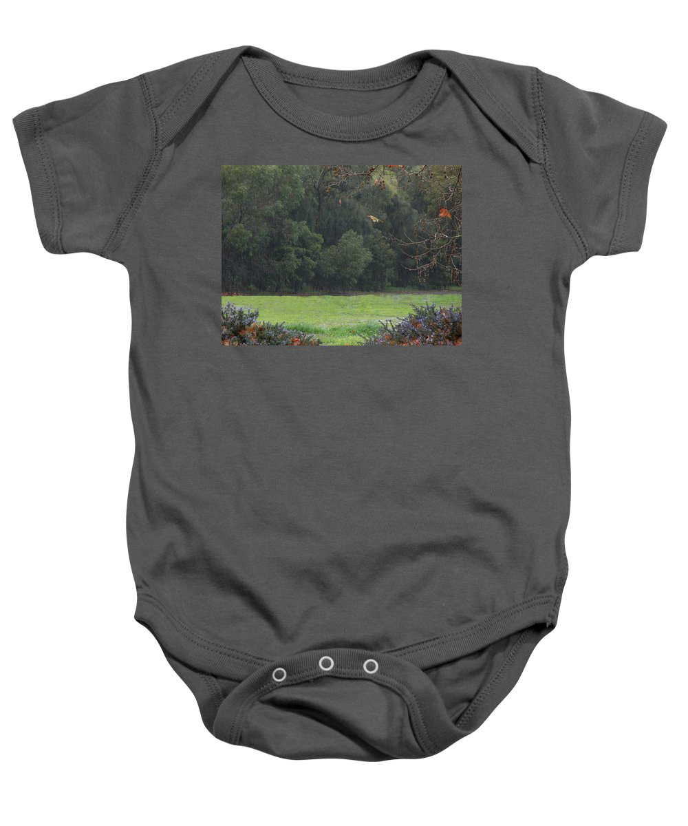Landscape Baby Onesie featuring the photograph Rainy Glade by Mark Blauhoefer